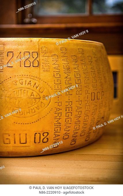 detail of parmesan cheese wheel rind