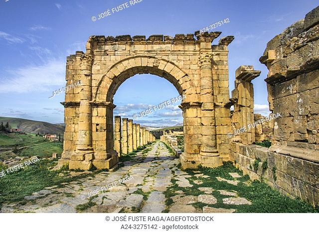 Algeria, Djemila City, Roman ruins of Djemila City, UNESCO, W. H. Ccardo Maximus Street