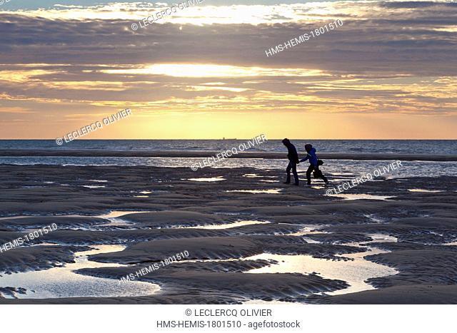 France, Pas de Calais, Cote d'Opale, Parc naturel regional des Caps et Marais d'Opale, beach at the foot of Cap Blanc Nez