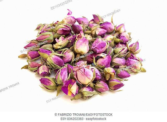 Pink dried rosebuds on a white background