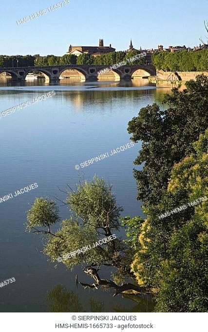 France, Haute Garonne, Toulouse, Garonne river banks, Pont Neuf in the background