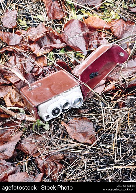 Retro vintage movie camera in leather red velvet lined case lying on ground amongst autumn leaves, Sweden