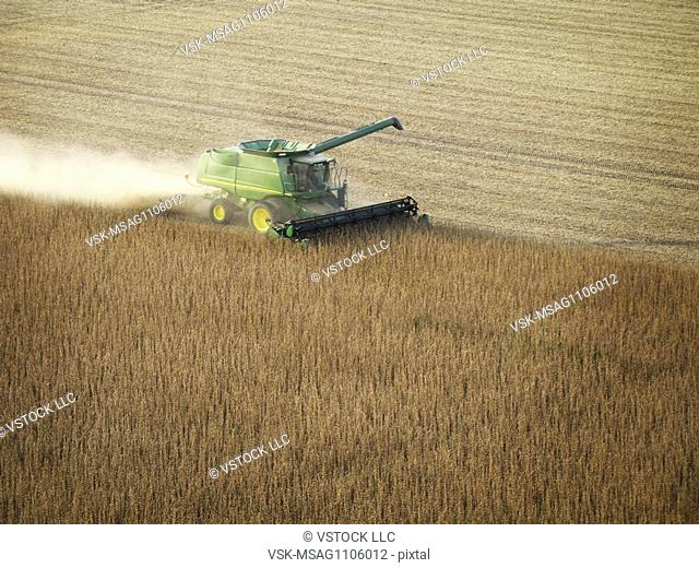 Farmer harvesting soybeans
