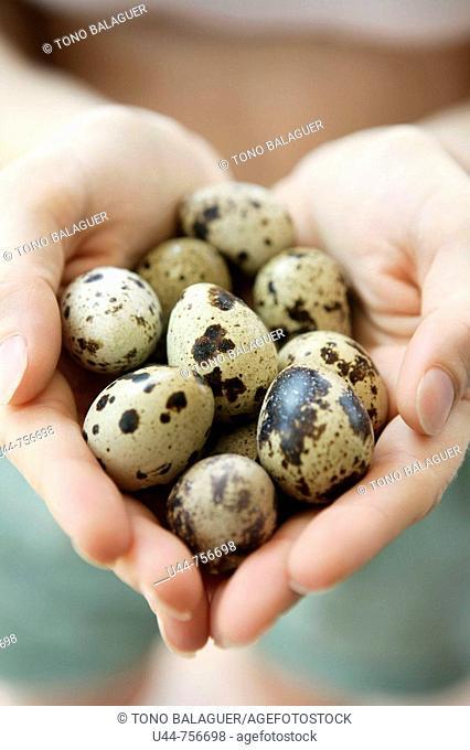 Hands offering fragile eggs