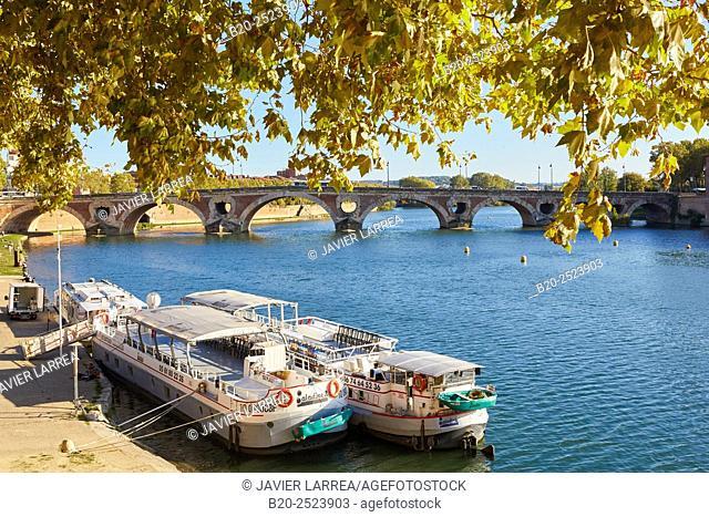 Pont Neuf. Garonne river. Toulouse. Haute Garonne. France