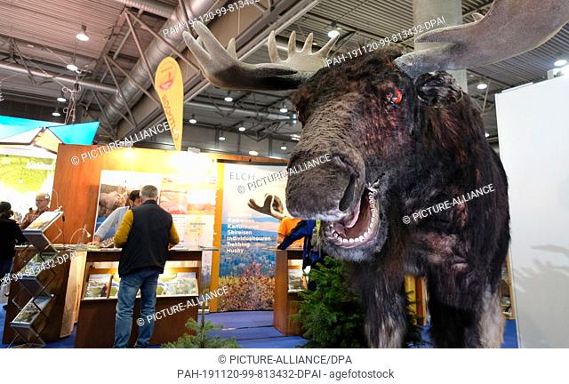 20 November 2019, Saxony, Leipzig: At the Touristik & Caravaning (TC) trade fair, a moose dummy advertises trips to Scandinavia. On Wednesday (20.11