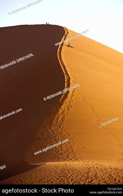 Dune 45 in Sossusvlei Area, Namib Naukluft Park, Namibia