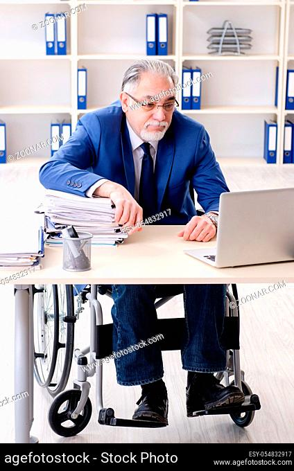 Aged employee in wheelchair working in the office