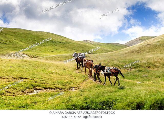 Mesa de los tres reyes mountain
