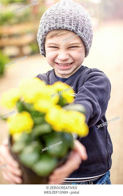 Boy holding yellow flower pot