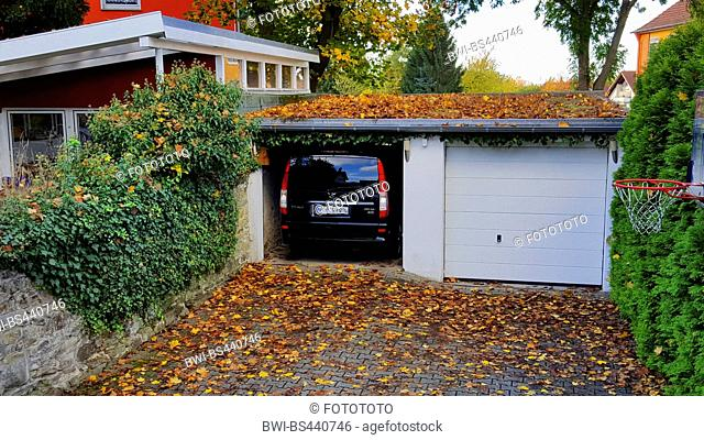 greened garage in a back yard between wall and hedge, Germany