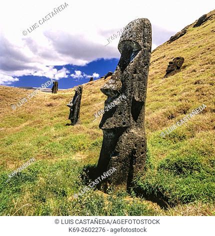 Moais at Rano Raraku. Easter Island
