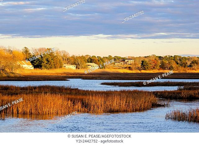 Wetlands in Barnstable, Cape Cod, Massachusetts, USA