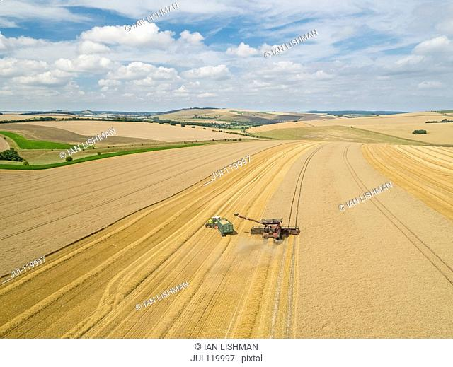 Harvest aerial landscape of combine harvester cutting summer wheat field crop with tractor trailer under blue sky on farm