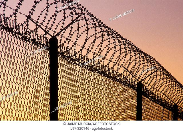 Razor wire security fence