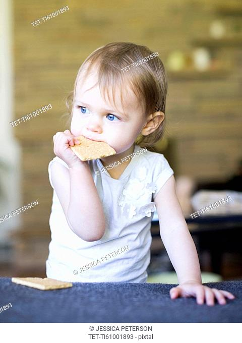 Girl (12-17 months) eating water cracker