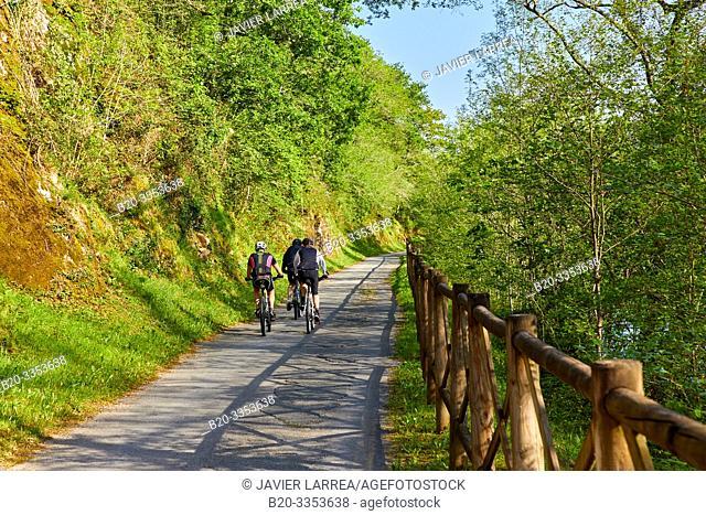 Pedestrian and bicycle path that runs along the banks of the river, Bidasoa River, Gipuzkoa, Basque Country, SpainBidasoa River, Gipuzkoa, Basque Country, Spain