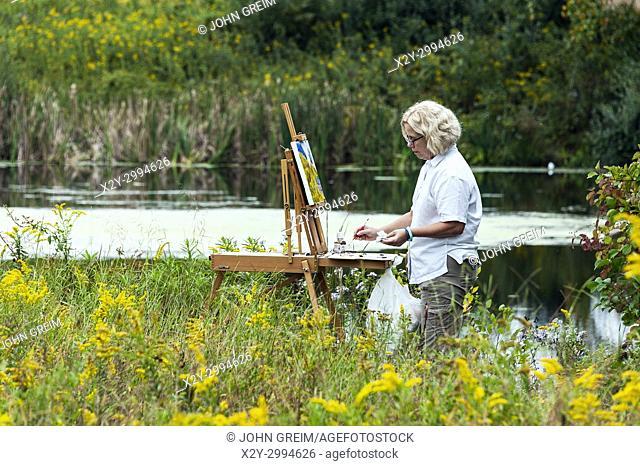 Plein air artist painting a field of flowers, Pennsylvania, USA