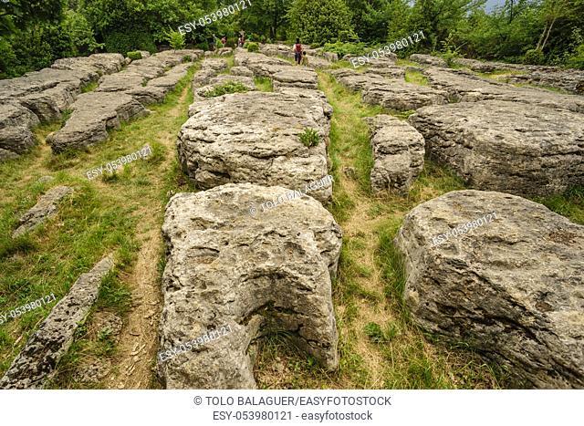 Grand Lapiaz, laberinto verde, Nebias, languedoc-Roussillon, departamento de Aude, pirineos orientales, Francia, europa