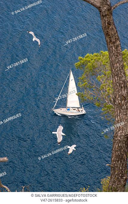 Sailboat sailing near the Rock of Ifach, Alicante, Valencia, Spain