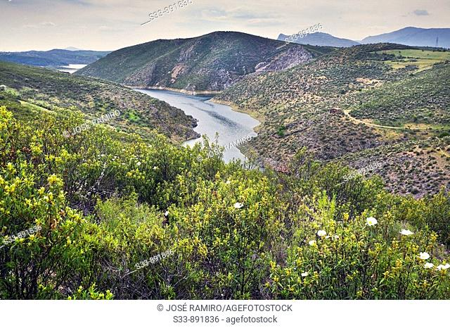 Embalse del Atazar. Comunidad de Madrid. Spain