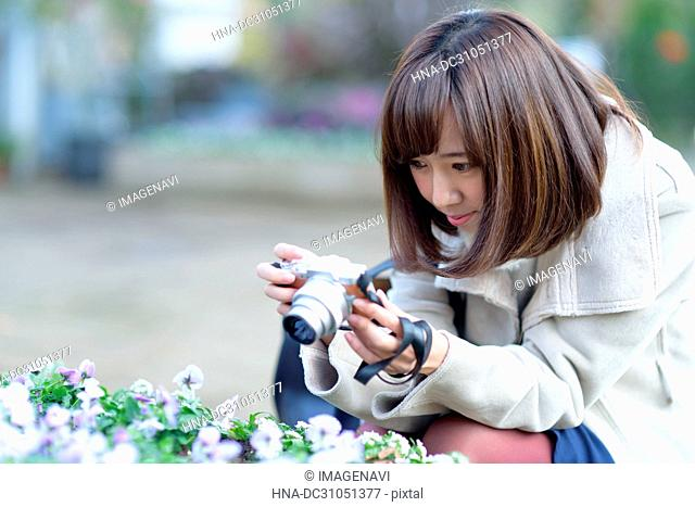 A woman taking photo of pansy