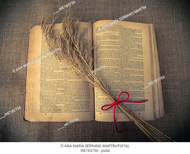 Vintage style. open antique book with dry grass and red thread with burlap background