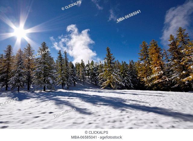 Orsiera Rocciavre Park, Chisone Valley, Turin, Piedmont, Italy, Autumn Orsiera Rocciavre Park