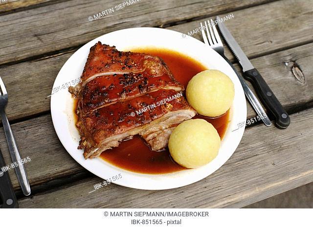 Suckling Pig with Dumplings served in a beer garden in Taxisgarten, Munich, Bavaria, Germany, Europe