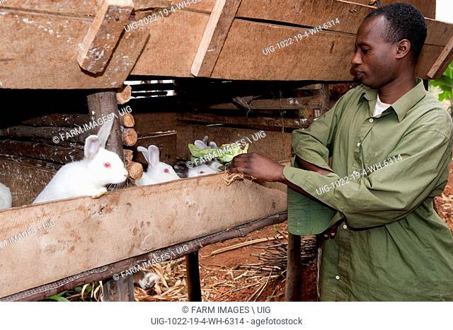 Family with rabbits kept for food. Rwanda. (Photo by: Wayne Hutchinson/Farm Images/UIG)