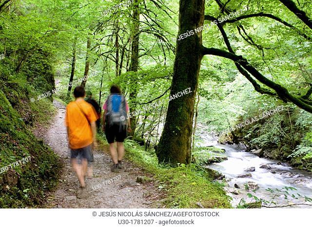 Hikers walking to Gorges d'Holzarte, near Larrau village, Atlantics Pyrenees, in Aquitaine region  France