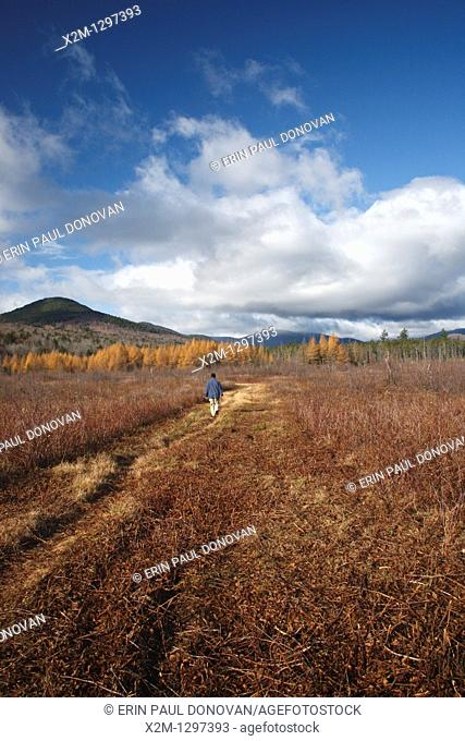 Hiker along the Downes – Oliverian Brook Ski Trail  This trail follows the old Swift River Railroad bed, which was an logging railroad in operation from 1906 -...