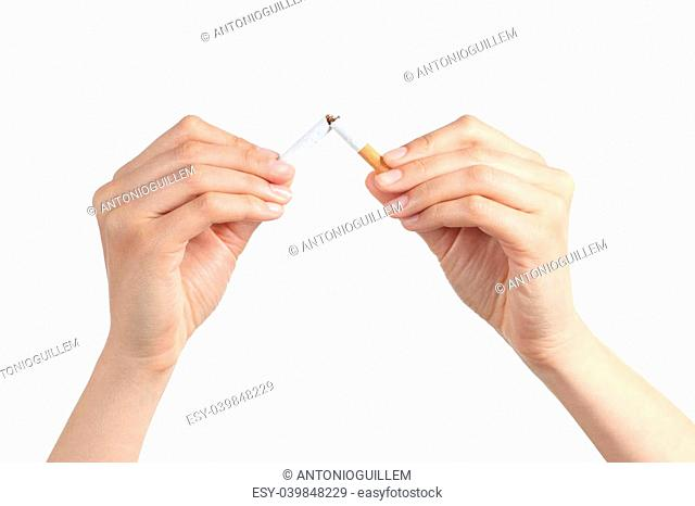 Woman hands breaking a cigarette isolated on a white background