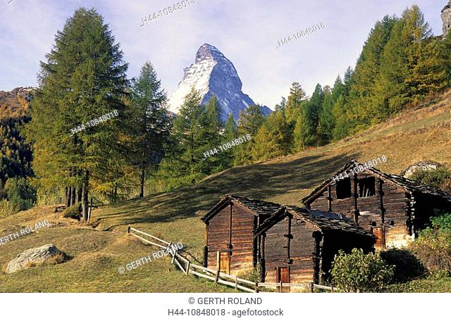 Switzerland, Europe, Canton Valais, Matter valley, Matterhorn, Zermatt, barns, Stadel, fall, autumn, larches, larch tr