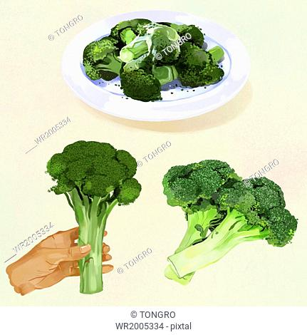 a set of broccoli in different forms