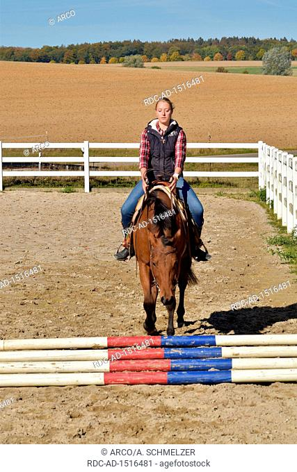 Horse Training, western horse, ground work, young horse, rails, rail