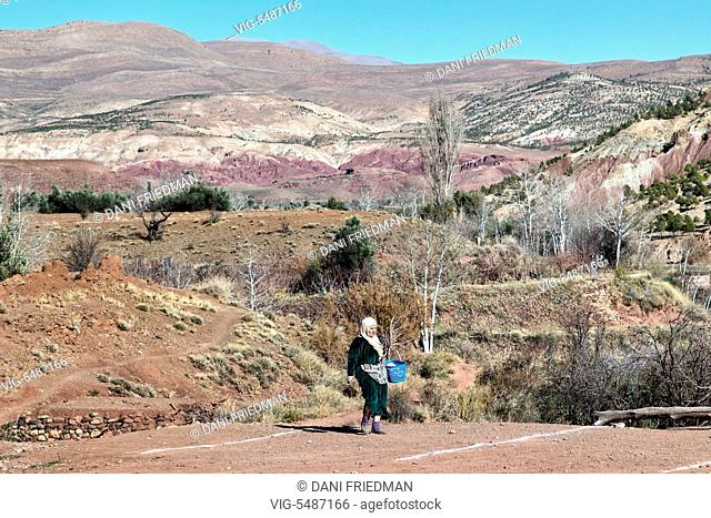 A Berber woman collects a small bundle of firewood for cooking in the High Atlas Mountains in Morocco, Africa. - MOROCCO, 04/01/2016