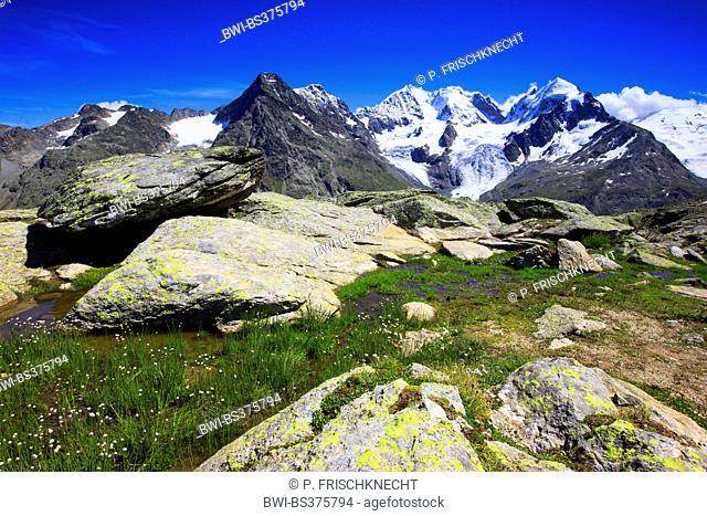 view from Fuorcla Surlej onto Piz Tschierva-3546 m, Piz Bernina-4049 m, Biancograt, Piz Roseg-3937 m, Switzerland, Grisons
