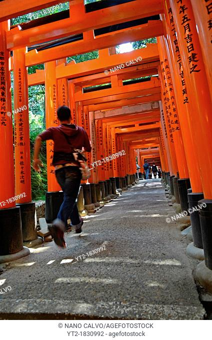 Fushimi Inari Taisha shrine, Kyoto