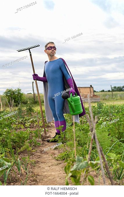 Mature man in superhero costume holding rake and watering can while standing at vegetable garden