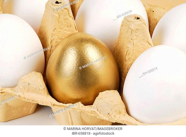 Golden egg in a carton of white eggs