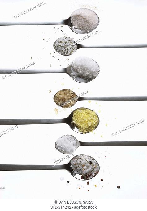 Various types of salt on spoons