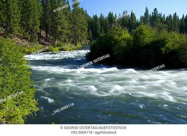 Deschutes Wild and Scenic River from Deschutes River Trail, Deschutes National Forest, Oregon