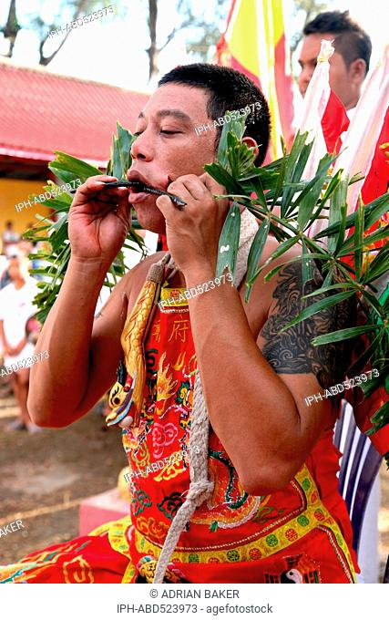 Thailand Phuket Festivals A Mah Jong going through the ritual of face piercing