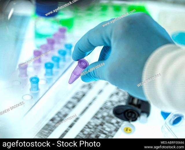 Hand of scientist wearing surgical gloves holding test tube