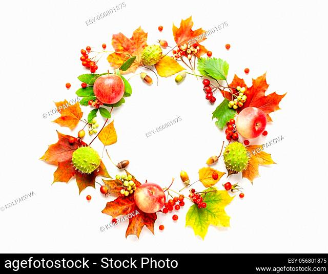 Autumn wreath made of apple, leaves, berries on white background. Autumn composition for Thanksgiving day or for other holidays. Flat lay, copy space