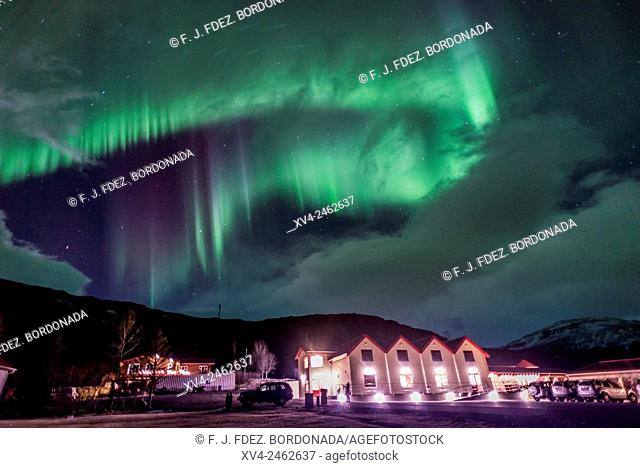 Aurora Borealis, Northern lights phenomenon in winter. Iceland southeast