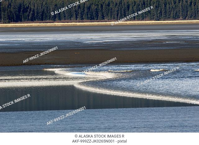 A bore tide rolls up the Turnagain Arm, Southcentral Alaska, Spring