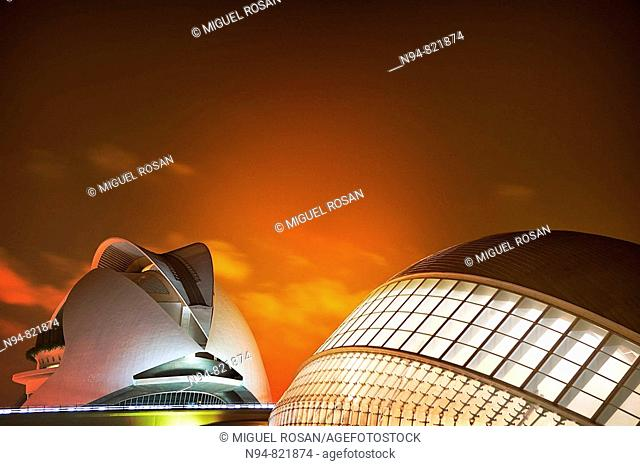 Picture a night access to the City of Arts and Sciences in Valencia Spain Europe