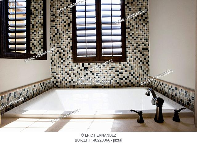 View of a bath with faucet in the bathroom